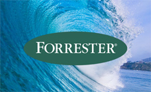 forrester wave email marketing vendors