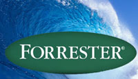 forrester_wave_email_marketing_vendors_2014